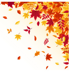 autumn falling leaves nature background with red vector image