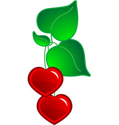 hearts and leaf vector image