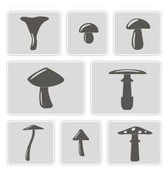 Monochrome icons with mushrooms vector