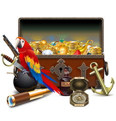Old pirate chest with parrot vector
