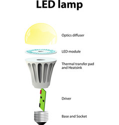 parts of a modern LED lamp vector image