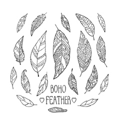 set hand drawn monochrome feathers isolated on vector image