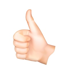 Thumb up vector image