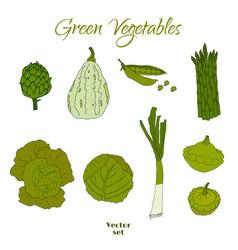 Hand drawn doodle green vegetables icons isolated vector