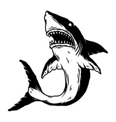 Angry shark in monochrome style design element vector