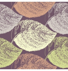 Autumn hand drawn leaf vector image