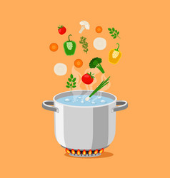 pan with soup vector image
