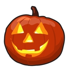 Pumpkin Isolated with Grin vector image