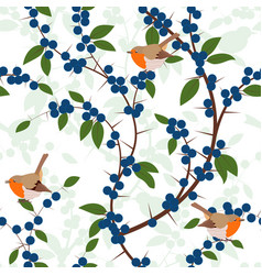 Seamless pattern of blackthorn berries and robin vector