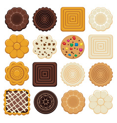 Set of colorful chocolate and biscuit chip cookies vector