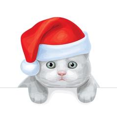 santa cat vector image vector image