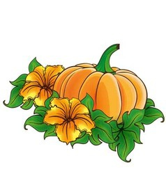 Pumpkin and flowers isolated vector image vector image