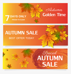 Autumn sale banner season leaf card nature vector