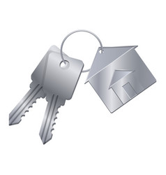 Shiny metal keys with silver trinket from dream vector