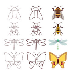 sketch line and flat insects collection vector image