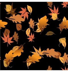 Autumn leaves in a water vector image vector image