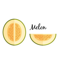 Galia melon in flat design isolated on white vector image