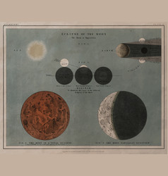 An astronomy lithograph the eclipse of the moon vector