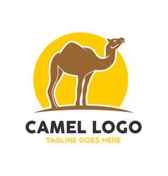 Camel logo-2 vector