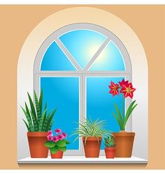 flowers window plants vector image