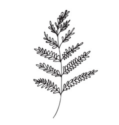hand-drawn sketch of a plant isolated on white vector image
