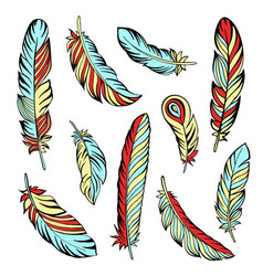 Indian feather set hand drawn vector