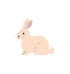 Logo for pets shop or clinic - hare or rabbit vector