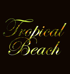 tropical beach text with curls of palm leaves vector image