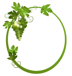 oval frame with a bunch of grapes vector image vector image