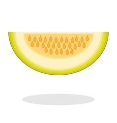 Slice of galia melon isolated on white background vector image