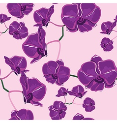 Seamless pattern with orchids hand-drawing vector image vector image