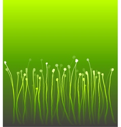 Abstract nature curly gradient grass over green vector
