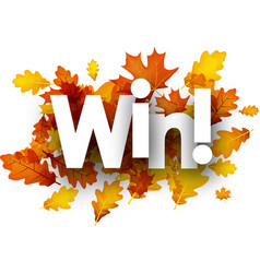 Autumn win background with leaves vector
