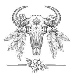 Buffalo or american bison skull vector