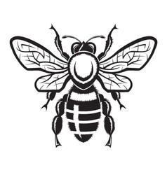Image of bee vector