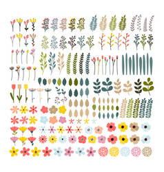 big floral set colorful collection with branches vector image