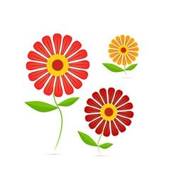 Gerbera Flowers vector image