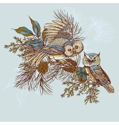 Ghristmas greeting card with owls spruce and fir vector image