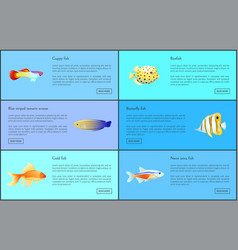 Guppy neon tetra fish set vector