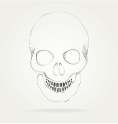 The symbol of the skull vector image