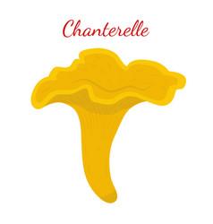 chanterelle mushroom cartoon flat style vector image vector image