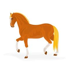 Sorrel-horse vector