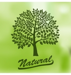 Tree with a Round Crown - Ecology Natural vector image