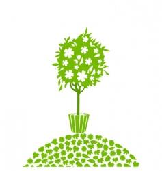 tree5 vector image vector image