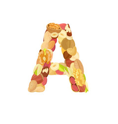 delicious letter made from different nuts a vector image vector image