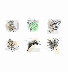 abstract line art tropical flower leaf tropic vector image