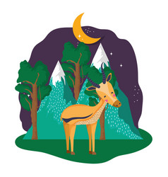 cute deer in the landscape on the night vector image