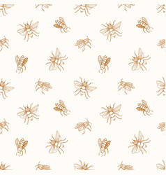 Seamless pattern with honey bees drawn with vector