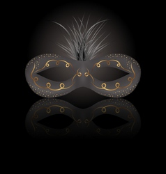 theater or Carnival mask with reflection on black vector image