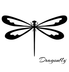 Black and white dragonfly vector image vector image